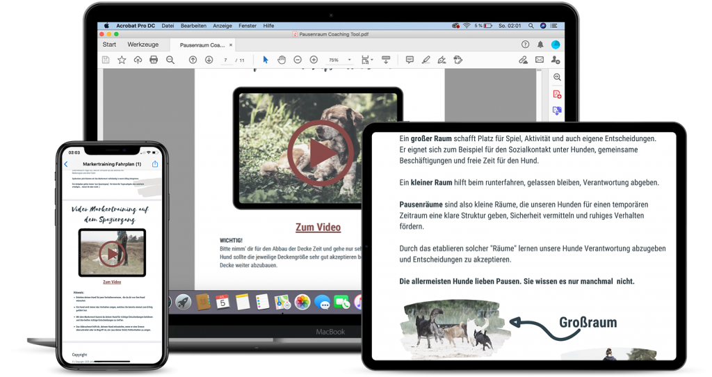 Online Coaching PDF